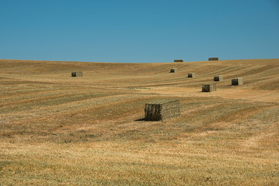 Hay Bales on the way to Carrión de los Condes on the Camino Santiago