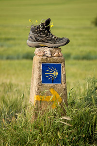 Approaching Logrono on the Camino Santiago
