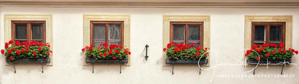Vienna Windows