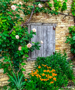 Wall framed by flowers