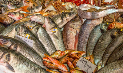 Fresh fish in the Saint Tropez market