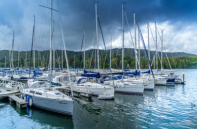 Sailboats docked for the day