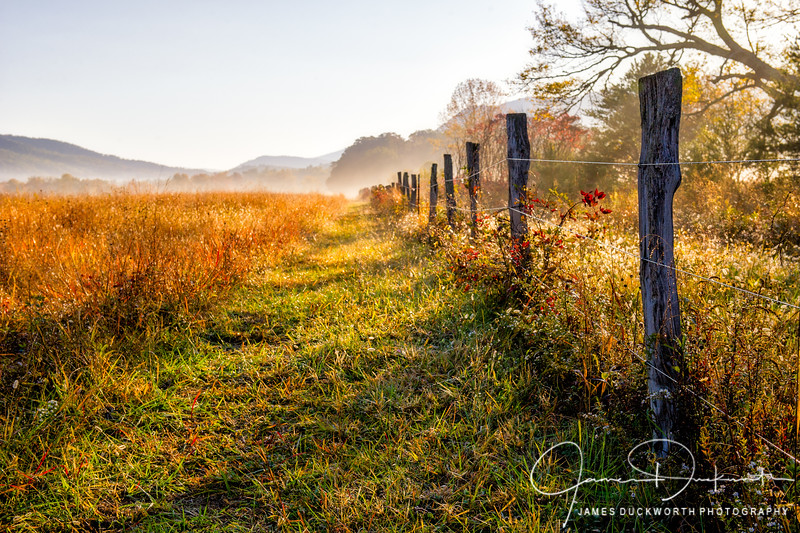Fence Line Morning, Cades Cove