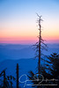 Day's End, Clingman's Dome, Great Smoky Mountains