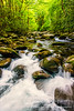 Little Pigeon River, Great Smoky Mountains National Park Vertical