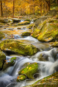Autumnal Flow, Great Smoky Mountains National Park