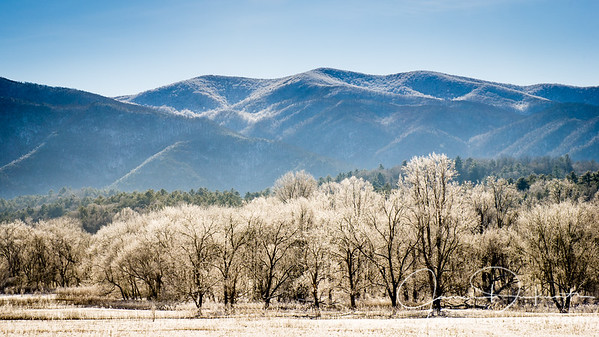 Winter in Cades Cove, Great Smoky Mountains National Park