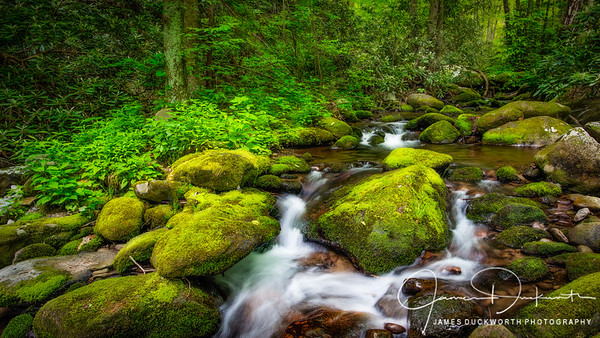 Roaring Forks, Great Smoky Mountains National Park