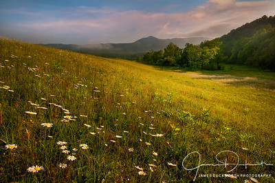 Sunrise in Cades Cove Meadow, Great Smoky Mountains National Park