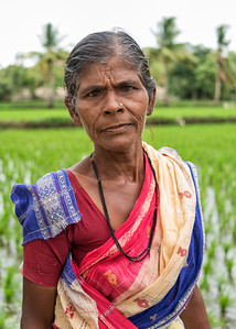 Rice Field Worker, Hampi, India - 2017