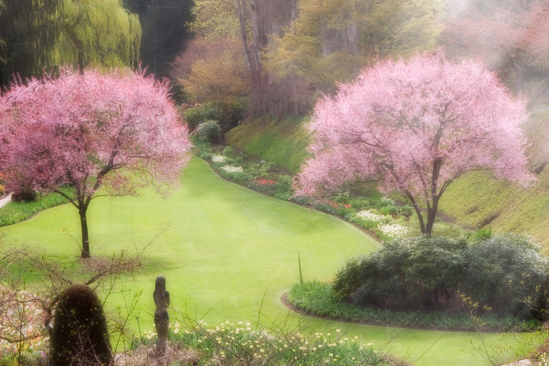 Sunken Garden in Butchart Gardens, Victoria, British Columbia, with rays of sunlight diffusing and softening the scene.