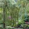 Sunken Garden scene in Butchart Gardens, Victoria, British Columbia, Canada.