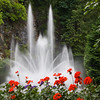 Sunken Garden Fountain in Butchart Gardens, Victoria, British Columbia