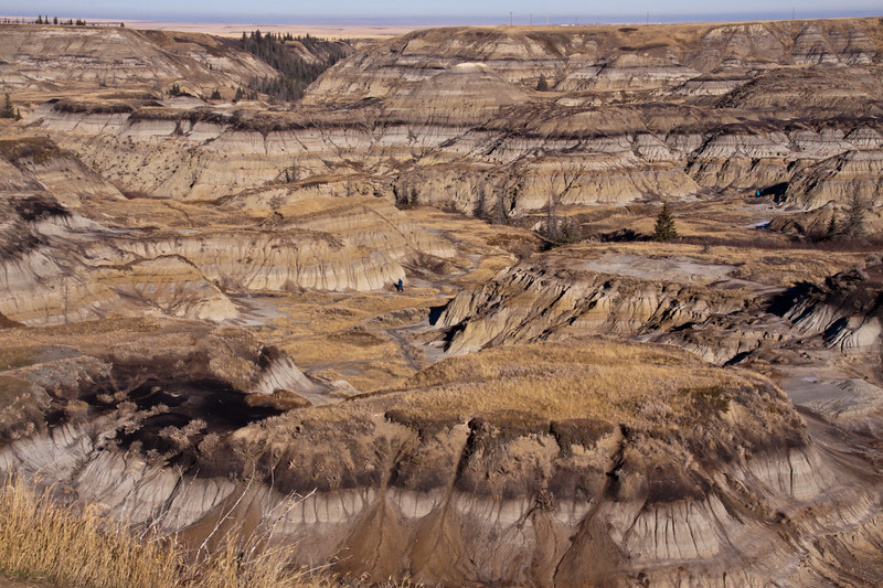 Canadian Badlands in southern Alberta, Canada. Millions of years of compressed sea deposits have been carved by glaciation and subsequent erosion into a striking landscape of strangely-sculpted badland formations and rolling prairies bisected by coulees and deep river valleys.