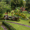 Tropical garden scene at the Bougainvillea Hotel in San Jose, Costa Rica.