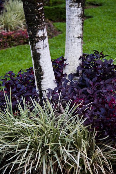 La Fortuna, Costa Rica, city park and gardens.
