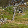 Rock Fence on Achill Island, County Mayo, Ireland