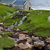 Famine Cottage at Keen Bay on Achill Island, County Mayo, Ireland