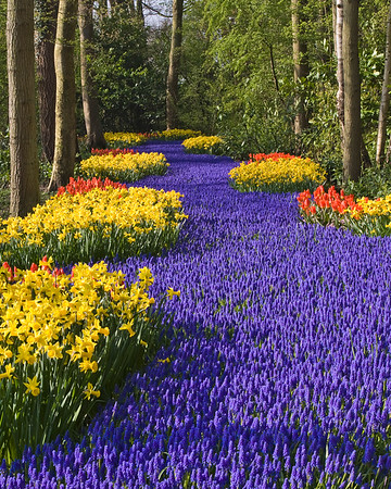The Netherlands-Holland