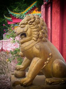 Lion Sculpture at a Temple