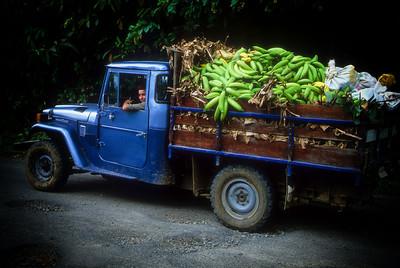 Banana Truck