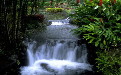 Waterfall near Arenal Lodge
