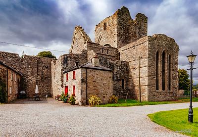Ruins of Boyle Abby