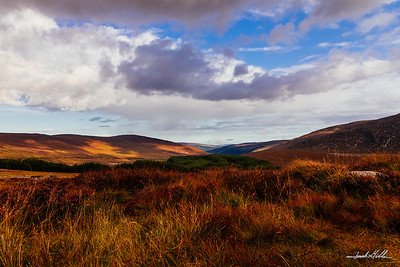 Glendalough Valley, just before sunset