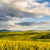 Val d'Orcia (3pics 10133x4857px)