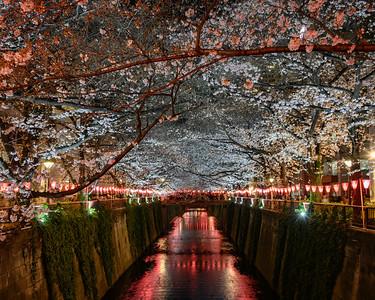Nake Meguro, Tokyo, Japan - 2019