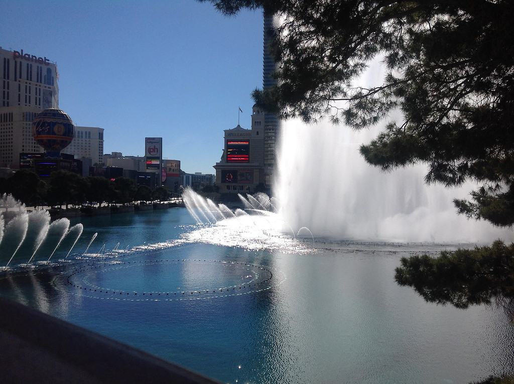 View from Olives at the Bellagio<br><i>photo:  Steve Barber</i>