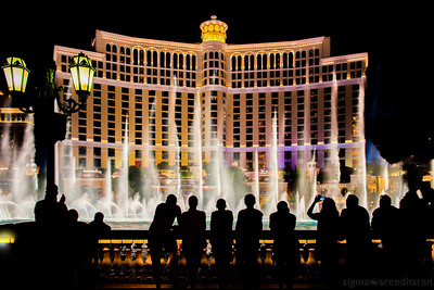 209/365 - Vegas Weekend: Watching the people watching the fountains    Camera:   NIKON D800  Lens: Nikkor 24-70mm Exposure Time: 0.4s (4/10)  Aperture: f/8  ISO: 100  Focal Length: 29mm