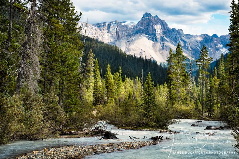 Yoho National Park, British Columbia, Cananda