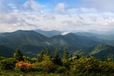 Morning Light Along the Appalachian Trail