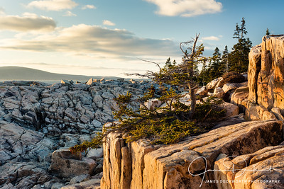 Schoodic Point Rock Formations, Acadia National Park, Maine