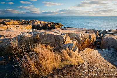 Warm light on the rocks at Schoodic Point, Acadia National Park