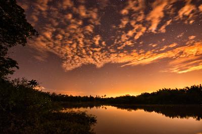 Fireflies, Kuala Selangor, Malaysia - 2015