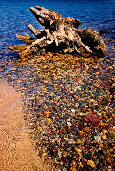 Drift Wood, Munising Bay, Munising Michigan