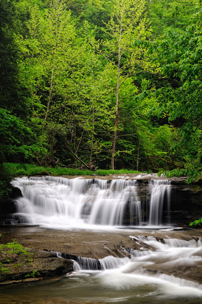 Waterfall along the Gorge Trail - Robert H. Treman State Park