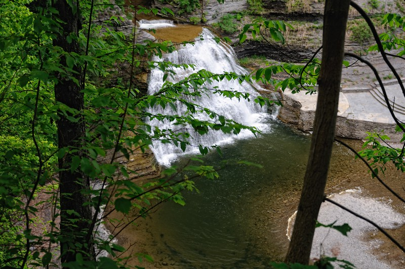 view of Lower Falls from the Rim Trail