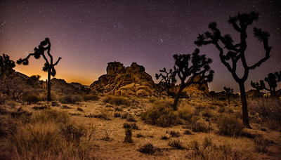 Night at Joshua Tree National Park, California - 2013