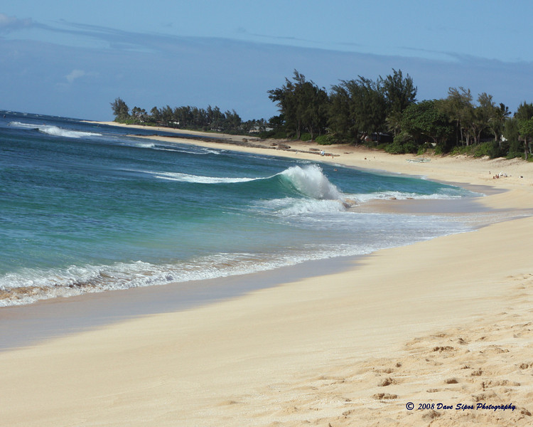 North Shore, Oahu May 2008