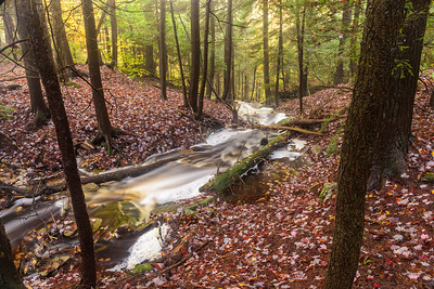 Stream along the Highland Trail