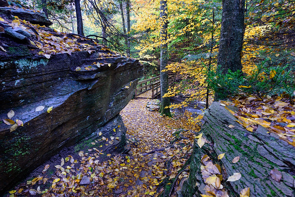 The Glen Leigh side of the Falls Trail