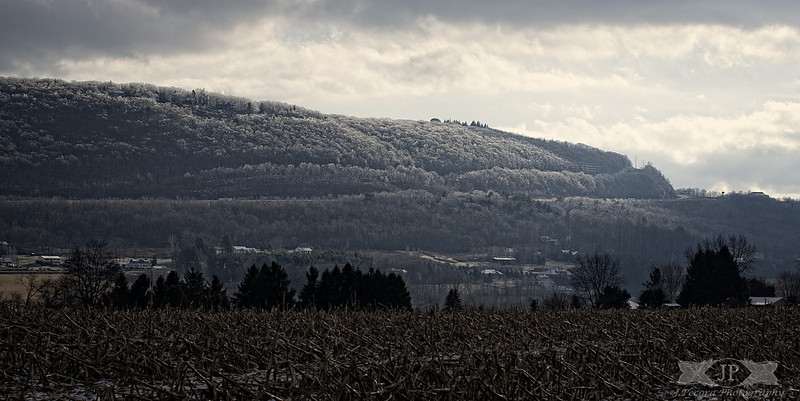 Frosted Mountain Side
