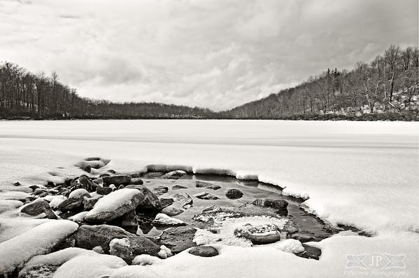 Winter Wilds