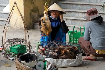 Hoi An, Vietnam - Market TK3_2290