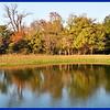 Pretty Wastewater Pond
