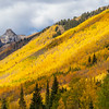 Aspen trees and autumn color along US Highway 550, the Million Dollar Highway, between Ouray and Silverton, Colorado.