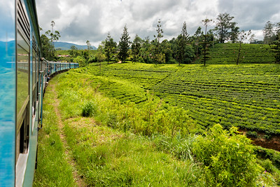 Mountain Train Through Tea Plantations, Sri Lanka - 2017